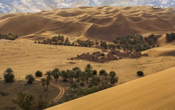 صور بديعة من السعودية تعكس عمق الحضارة وتنوع الثقافة